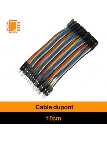 Cable Dupont 10 cm