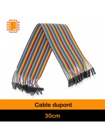 Cable Dupont 30 cm