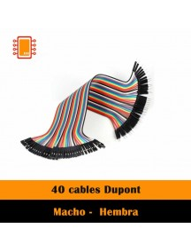 Cable Dupont 20 cm